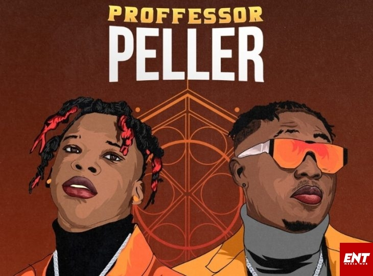 Seyi Vibez ft Zlatan Ibile - Professor Peller